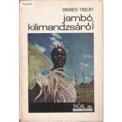 Sebes Tibor: Jambó, Kilimandzsáró!