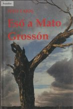 Füry Lajos: Eső a Mato Grossón