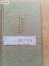 Vigh Jenő: Ha Haydn naplót írt volna…