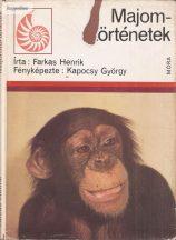Eötvös József:  A falu jegyzője