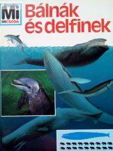 Petra Deimer: Bálnák és delfinek