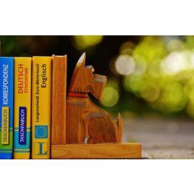 Idegennyelvű könyvek